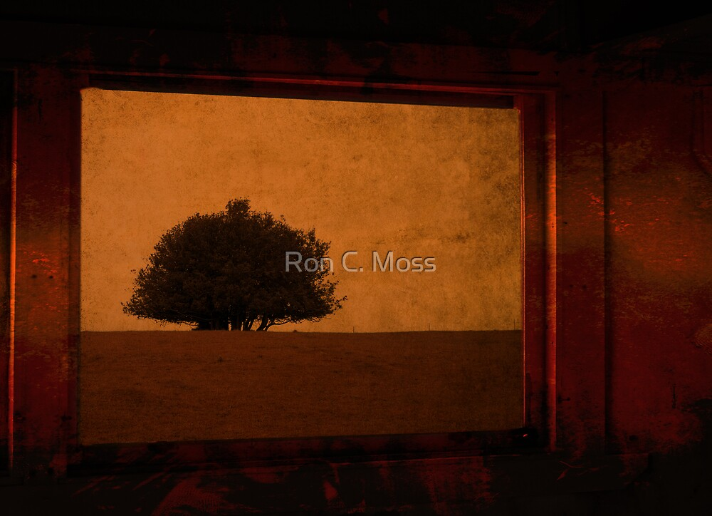 one tree by Ron C. Moss