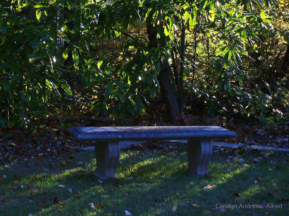 A PLACE TO REST by Carolyn Andrews-Allred