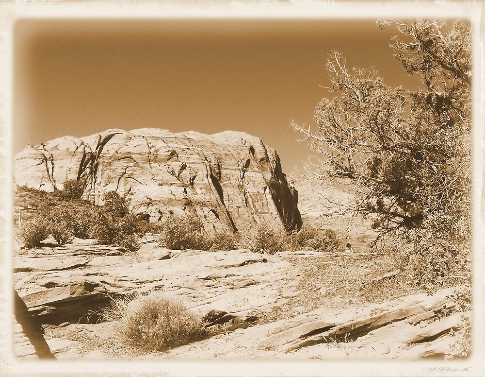 Vintage Utah Desert by hunter22375