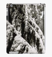Draped in Splendor iPad Case/Skin
