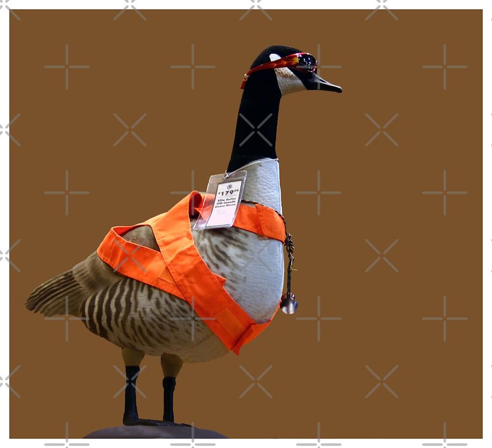 The Latest In California Goose Attire by CarolM