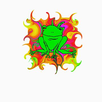 Frog In Rainbow Land by office1234