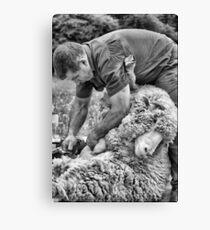 Click Go The Shears #1 Canvas Print
