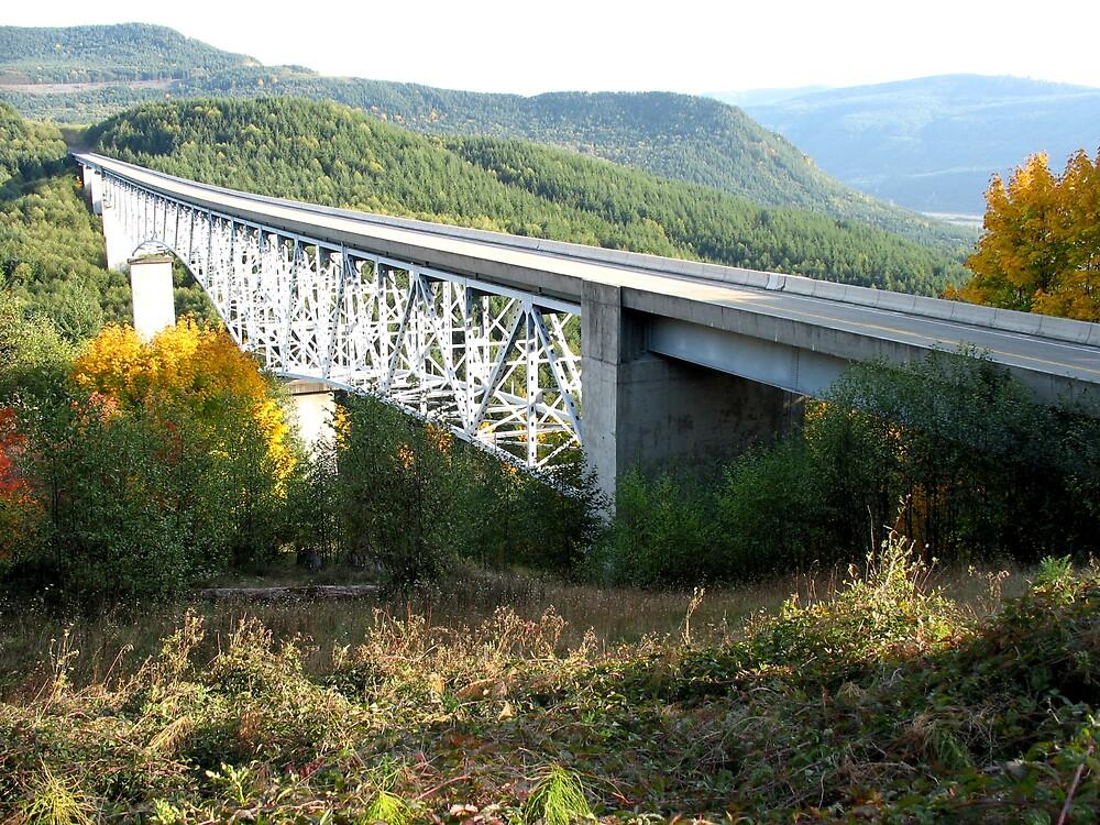 Hoffstadt Creek Bridge by Cheezweezl