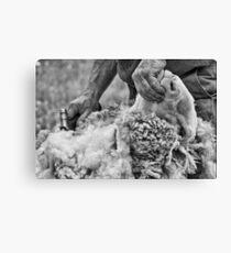 Click Go The Shears #2 Canvas Print