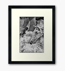 Click Go The Shears #3 Framed Print