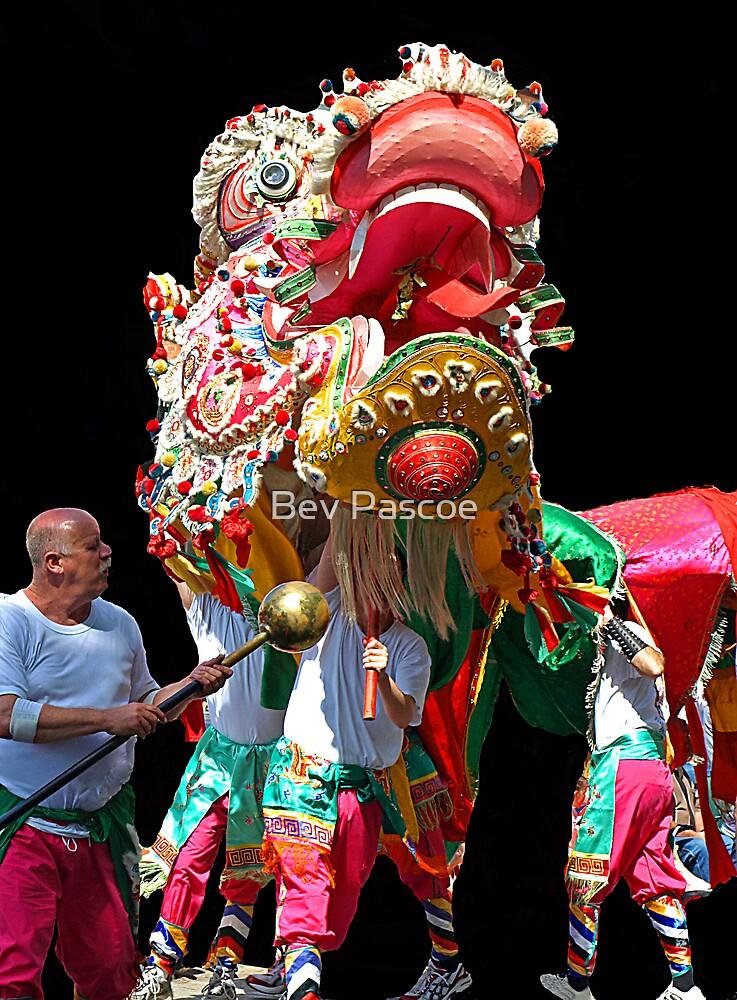 Sun Loong Chinese Dragon - Easter Parade, Bendigo by Bev Pascoe