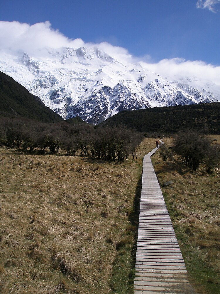 Track to Mount Cook by brenno