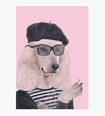 French Poodle Photographic Print
