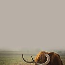 Highland Cow in Mist by banginT