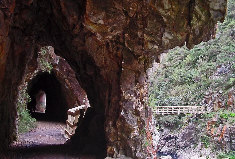 Karangahake Walkway 2 by Robert Abraham