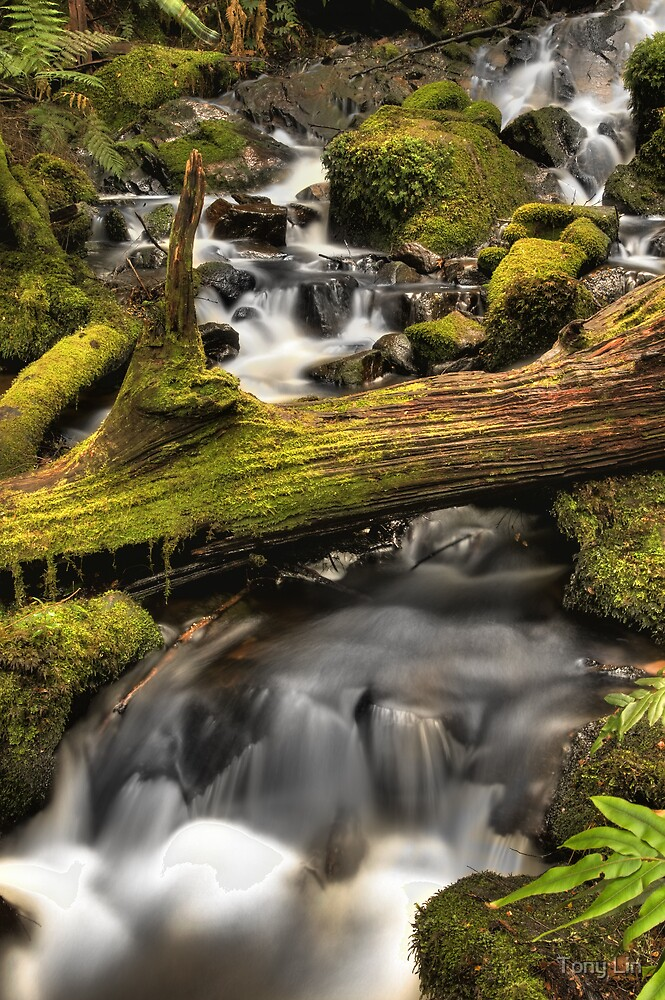 Cora Lynne Falls HDRi Change of Perspective by Tony Lin