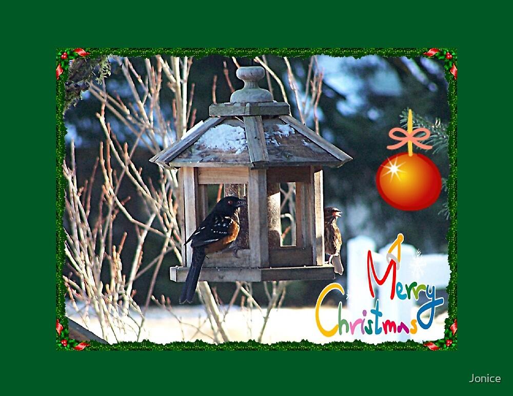 Birds At The Feeder Merry Christmas Card by Jonice