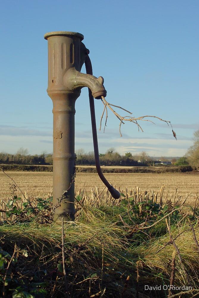 Old Water Pump by David O'Riordan
