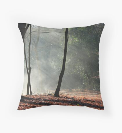 the morning of creation Throw Pillow