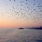 Sunset ~ Old Brighton Pier by BettinaSchwarz