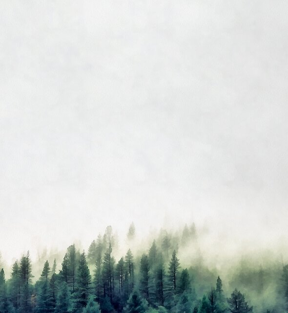Misty Forest Pine Trees Watercolor by banginT