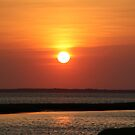 Sunset on the Bay by Nancy Hopping