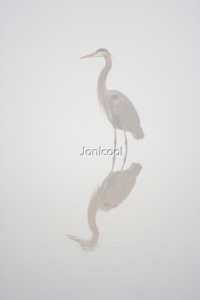 In the Mist by Jonicool
