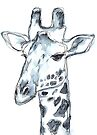 Giraffe, portrait in watercolor by Kendra Shedenhelm