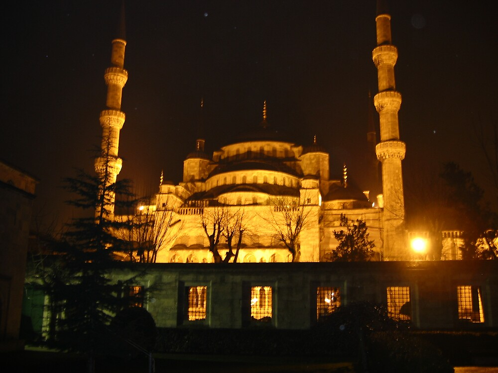The Blue Mosque by mypics4u