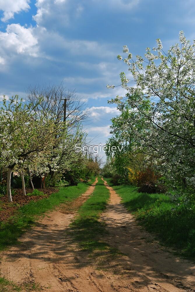 Rural road in spring by Sergieiev