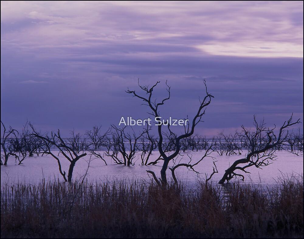 New Dawn at Menindee by Albert Sulzer