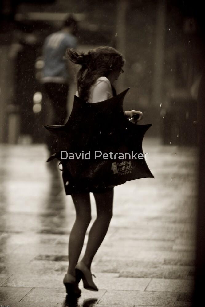 The fly away umbrella by David Petranker