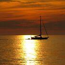 Sunset Sail by Greta  McLaughlin