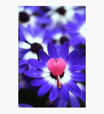 Your Heart Stand Out to Me Photographic Print