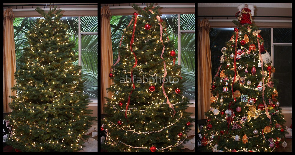 Our Christmas Tree by abfabphoto