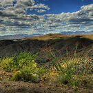 Desert Clouds by K D Graves Photography