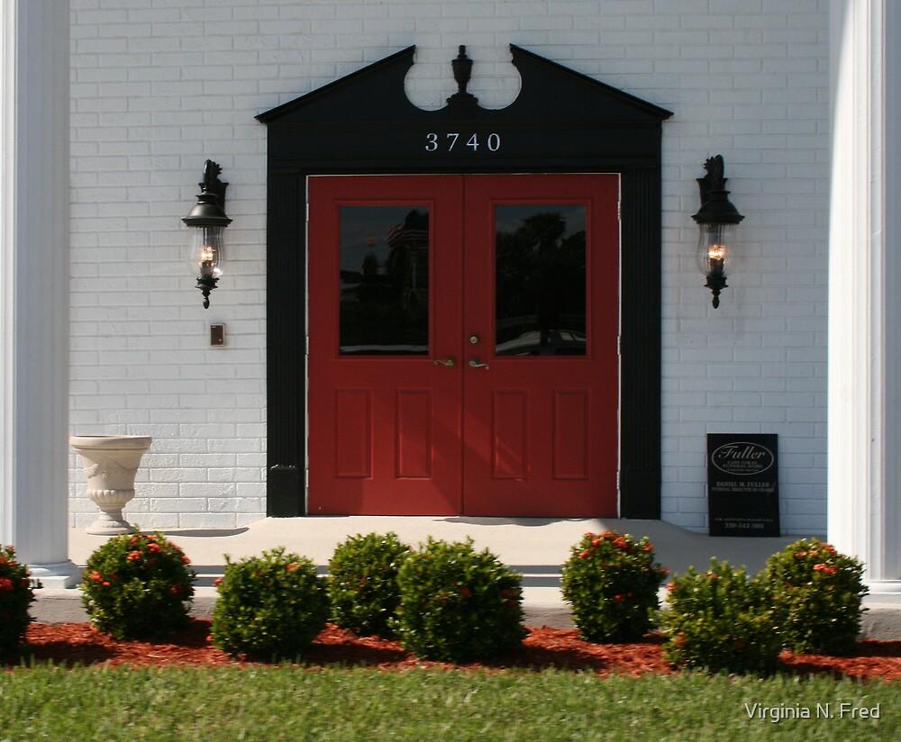 The Red Door by Virginia N. Fred