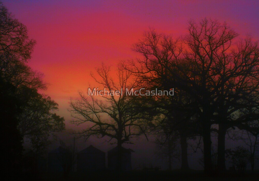 Sunrise in the Fog by Michael McCasland