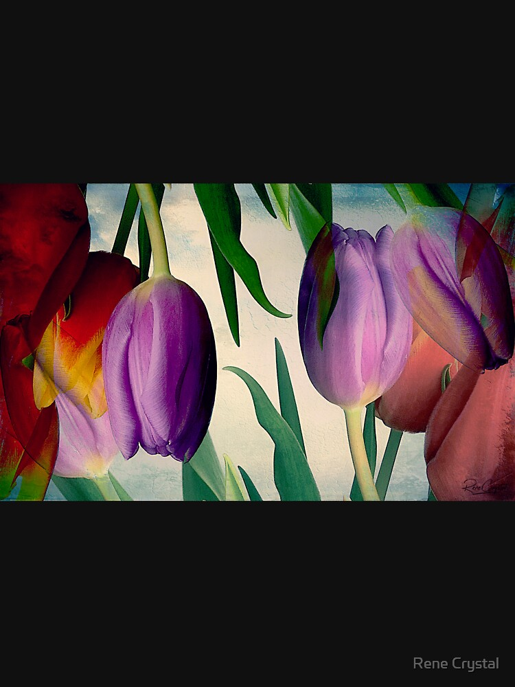Tulips Gone Topsy Turvy by imagesbycrystal