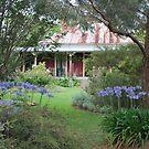 Home Sweet Home by Julie Sherlock