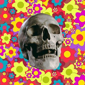 lovely skull by happymigrane