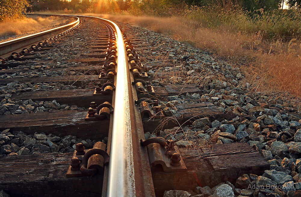 Golden Rail by Adam Bykowski