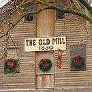 The Old Mill by raindancerwoman