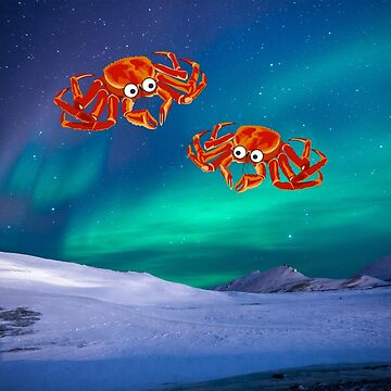 two crabs looking at the northern lights by happymigrane