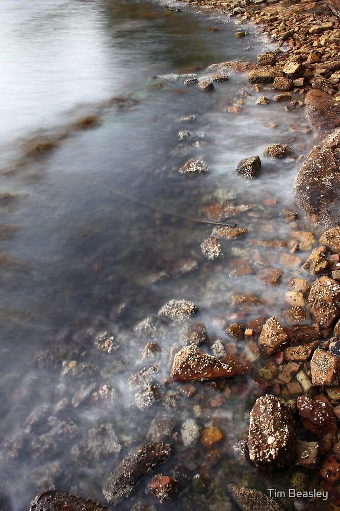 Rocky Shore by Tim Beasley