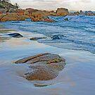 Honeymoon Bay by Harry Oldmeadow