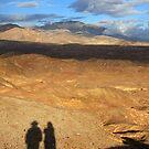 Desert Shadows by CarolM
