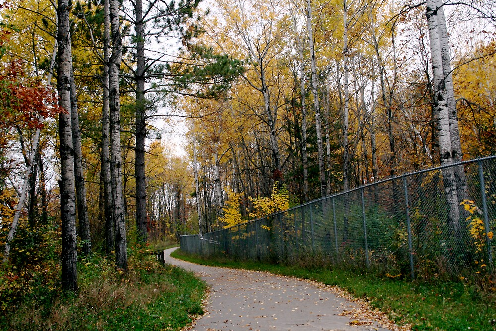 bike trail, crosby, mn by Mark Mcdonough