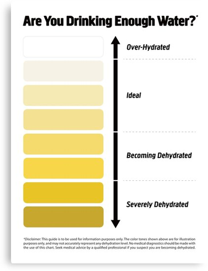 Urine Color Chart Pee Color Chart Canvas Prints By Kelsorian