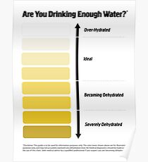 Urine Color Chart, Pee Color Chart Poster