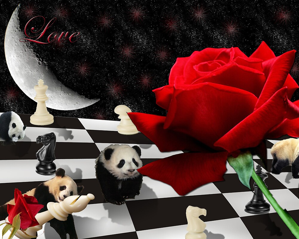 Love panda <3 by Celeste Chavez