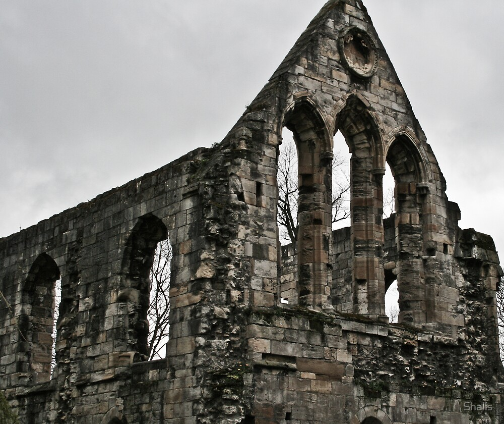 City Ruin by Shalis