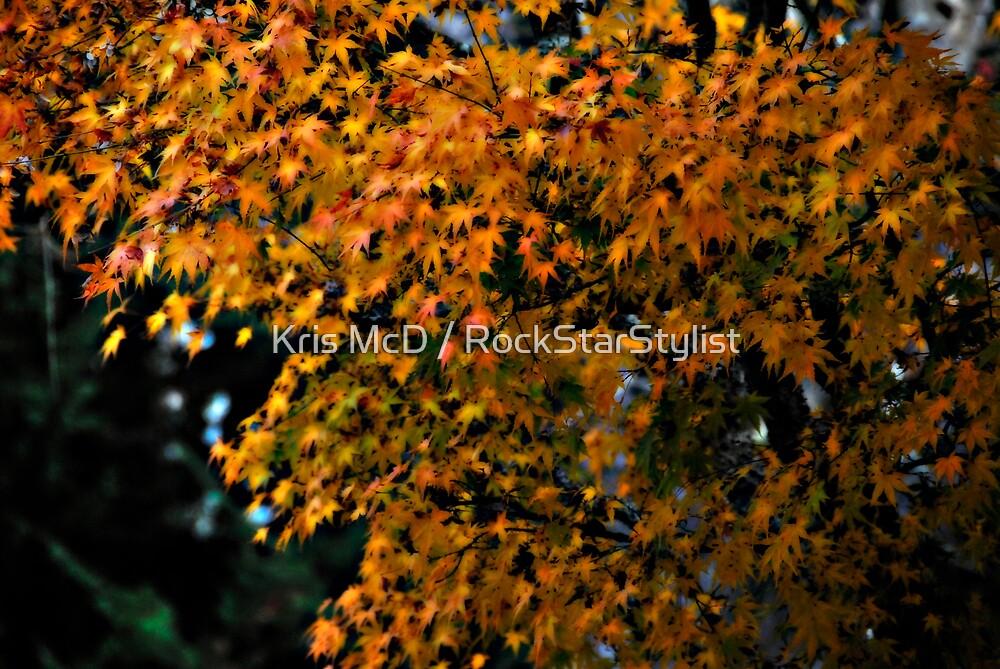 yellow by Kris McD / RockStarStylist