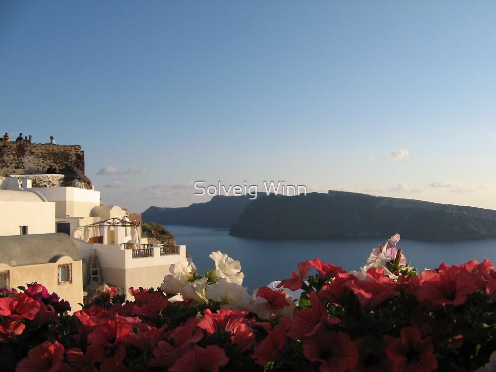 Greece - Flowering Sunset by Solveig Winn